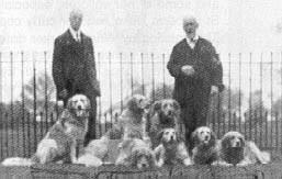 Col. The Hon. W. le Poer Trench (destra) con il fratello e i suoi cani di  St. Hubert – circa 1906